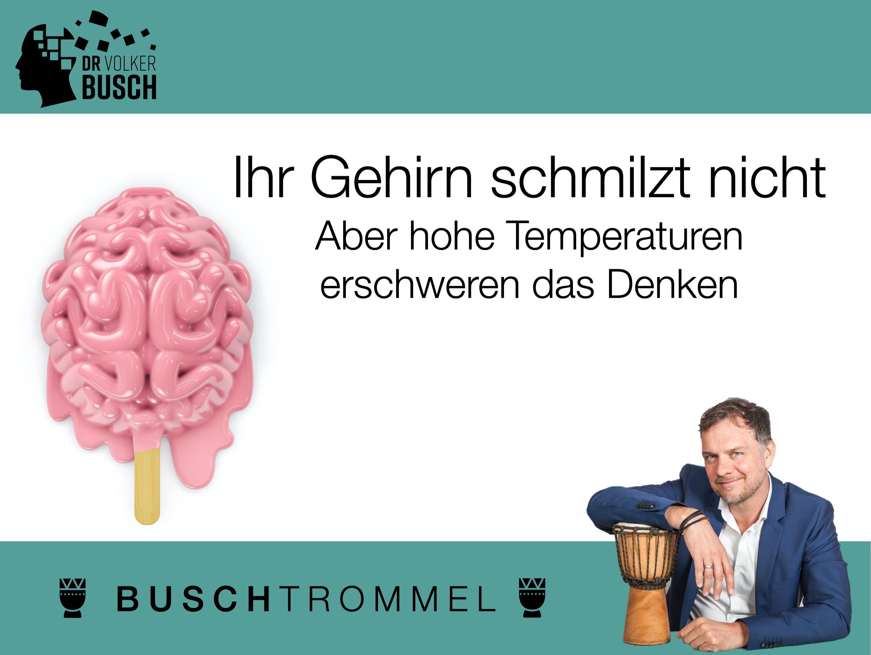 Buschtrommel: Ihr Gehirn schmilzt nicht - Dr. Volker Busch