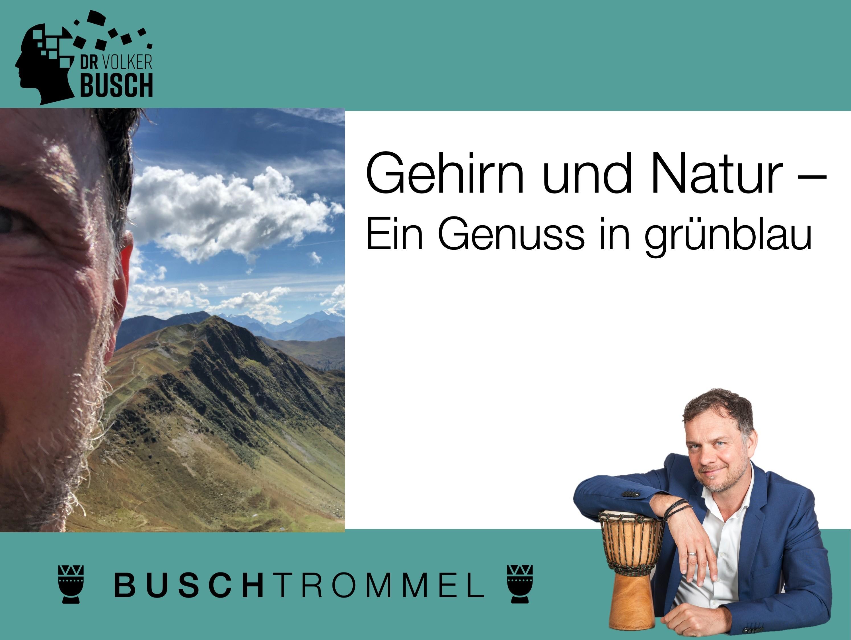 Buschtrommel: Gehirn in der Natur - Dr. Volker Busch