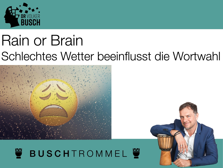 Buschtrommel: Rain or Brain - Dr. Volker Busch